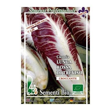 semillas ecológicas de achicoria rossa di Treviso