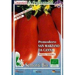tomate san Marzaro de caña (semillas ecológicas)