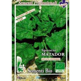 espinaca matador - semillas ecologicas