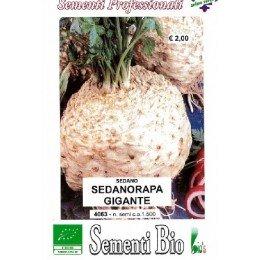 semillas ecológicas de apio nabo gigante