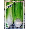semillas ecológicas de apio verde