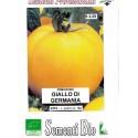 semillas ecologicas de tomate amarillo de Alemania - golden jubille
