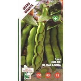 haba dulce de Calabria - semillas ecologicas