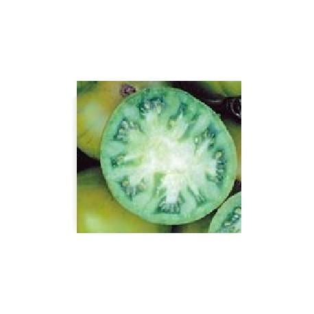 semillas de tomate tasty evergreen