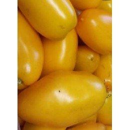 semillas de tomate roman candle