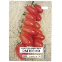 tomate datterino (semillas ecologicas)
