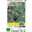 semillas ecológicas de perejil rizado