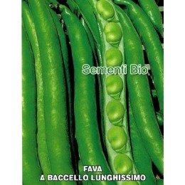 haba aguadulce slonga - semillas ecologicas
