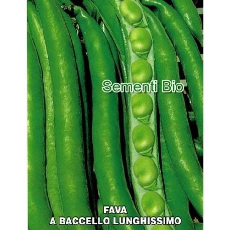 haba aguadulce de vaina larga - semillas ecologicas