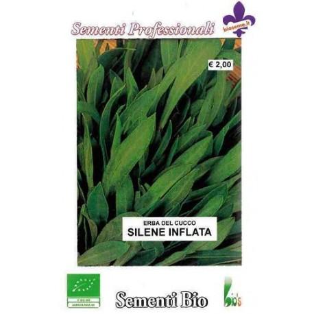 collejas (silene inflata) semillas ecologicas