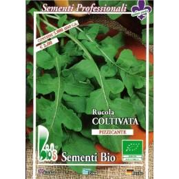 rucula cultivada (semillas ecológicas)
