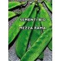 guisante tirabeque carouby - semillas ecologicas - www.planetasemilla.es
