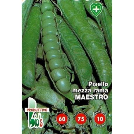 guisante maestro - semillas ecologicas-www.planetasemilla.es