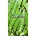 guisante lavagna extra - semillas ecológicas - www.planetasemilla.es