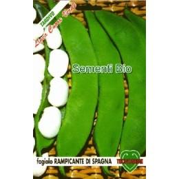 Judia de enrame de España - semillas ecológicas