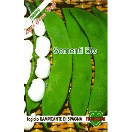 semillas ecologicas de judia coco bianco de enrrame