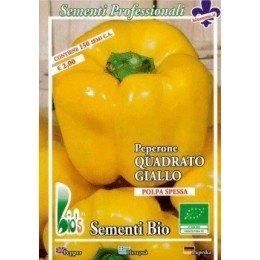 pimiento amarillo cuadrado (semillas ecológicas)