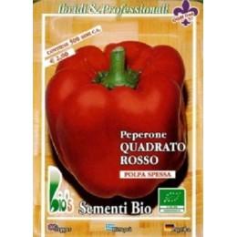 pimiento rojo cuadrado (semillas ecológicas)