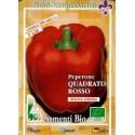 semillas ecologicas de pimiento rojo cuadrado
