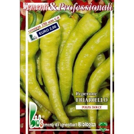 semillas ecologicas de pimiento friariello