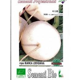 nabo blanco lodigiana (semillas ecológicas)