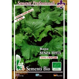 nabo de grelos San Cosme (semillas ecológicas)