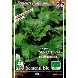 nabo sin cabeza de grelos (semillas ecológicas)