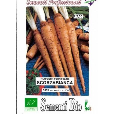 semillas ecológicas de scorzobianca