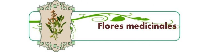flores medicinales