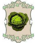 hortalizas de hoja eco