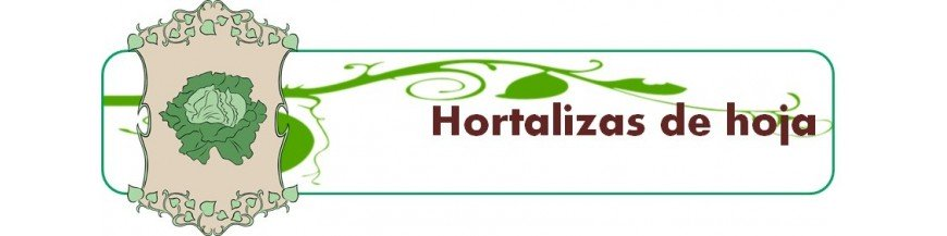 hortalizas de hoja