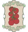 hortalizas de fruto
