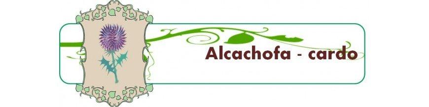 alcachofa - cardo