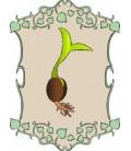 plantel para huerto