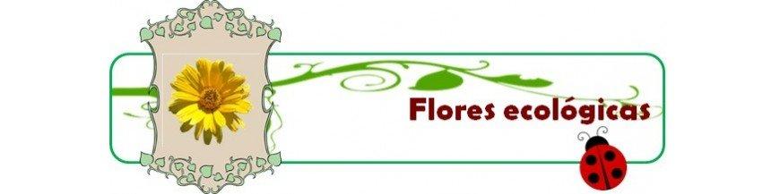 Flores ecológicas