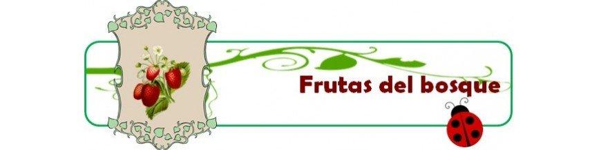 Plantas de frutas del bosque